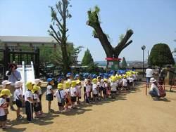 5月23日学院内遠足001_.JPG