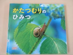 にじぐみ☆かたつむり005_R.JPG