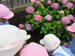 雨の日の楽しみ☆007_R.JPG