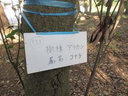 秋探し☆004_R.JPG